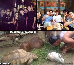 GD and Ri with friends... Meanwhile Taeyang
