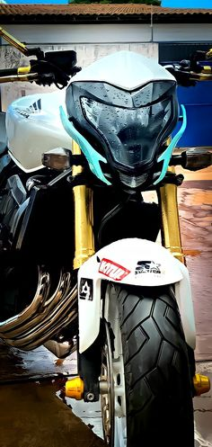 Cb 600 Hornet, Cars And Motorcycles, Honda, Bike, Wallpapers, Wall, Motorbikes, Bicycle, Bicycles