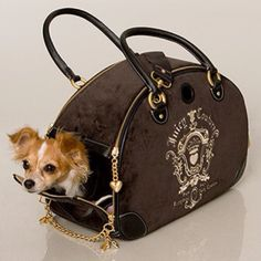 Doggy carrier Small Pet Carrier, Dog Carrier Purse, Dog Carrier Bag, Designer Dog Carriers, Dog Bag, Chihuahua Love, Dog Travel, Little Puppies, Pet Carriers