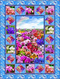 Orchid Garden FREE Quilt Pattern - personalize your own at http://www.equilter.com/pattern/688/orchid-garden?fn=pa_20160421194634