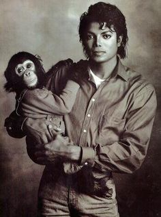 Michael Jackson with his chimpanzee, Bubbles. Michael and Bubbles made many appearances together until the chimp became too pugnacious to have around Michael's children. Bubbles was given to the Center for Great Apes in Wauchula, Florida, where he still lives. | Curiosities and Facts about Michael Jackson ღ by ⊰@carlamartinsmj⊱