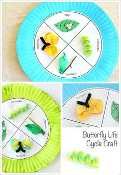 Pretty Butterfly Life Cycle Paper Plate Craft for Kids.
