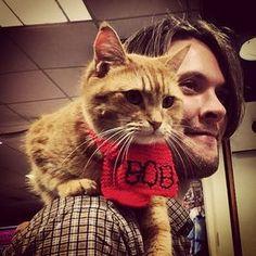 Street Cat Bob.