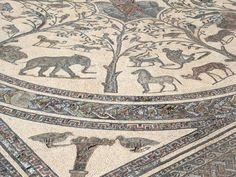 Incredible mosaic at Volubilis, Roman ruins near Meknes, Morocco