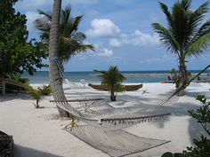Google Image Result for http://bocaraton.isabellascott.com/wp-content/uploads/2010/06/flickr-darcy-mccarty-belize-beach-hammock-400x300-151745625.jpg