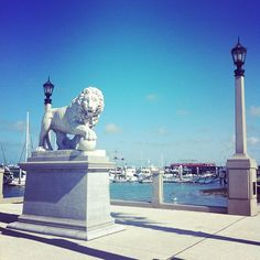 bridge of lions in st. augustine florida. Can't wait to go back and take better pics!