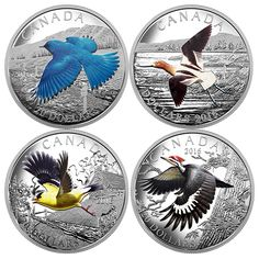1 oz. Fine Silver Coloured 4-Coin Subscription – Colourful Birds of Canada (2016)