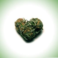 A Weed Wedding? You'll actually save money by serving weed instead of alcohol...#WeddingWeed #Marijuana #WeedvsAlcohol