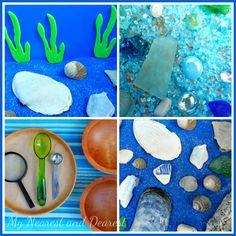 Ocean Floor Discovery Bin