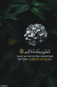 Make me one of the inheritors of the Garden of Bliss.  Quran 26:85   Ameen ✨