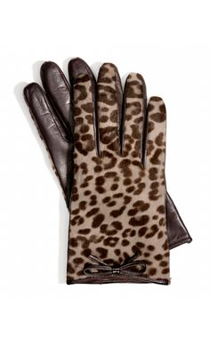 Leather and leopard gloves.