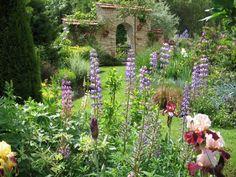provencal garden Shade Flowers, Shade Plants, Peonies, Tulips, Country Cottage Garden, Provence Garden, Quelques Photos, Small Gardens, Garden Styles