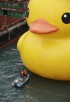 | P | Dutch conceptual artist Florentijin Hofmans giant rubber duck is also known as Spreading Joy Around the World