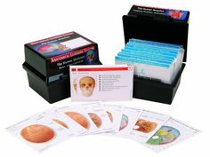 5 Reasons Why You Shouldn\'t Overlook Netter\'s Anatomy Flash Cards ...