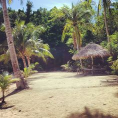 Halea Nature Park, Monreal Mabaste, Philippines #Beach #privatebeach #traveling #Sea #Whitesand #Vacation #Getlost