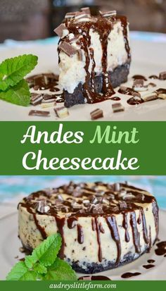 It's one of the best cheesecake recipes and is perfect for the holidays. This andes mint cheesecake is an award winning dessert! It's a perfect combination of sweet plain cheesecake, a touch of mint, and an oreo crust. Oreo Dessert, Bon Dessert, Brownie Desserts, Mint Desserts, Delicious Desserts, Dessert Recipes, Dessert Healthy, Health Desserts, Dessert Ideas