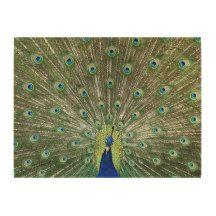 Beautiful Peacock wood Canvas Print
