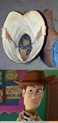 There's a snake in my boot! This is NOT funny! I would die of a heartatack!!!