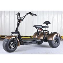 And Children Women Trike Electric Scooter Adult 20ah 1000w Electric Vehicle Enclosed Battery Comfortable Totally Three Wheeled Differential Motor Suitable For Men