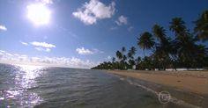 Praias de Tamandaré (PE) têm oito quilômetros de piscinas naturais