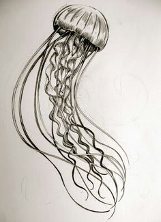 Simplistic jellyfish