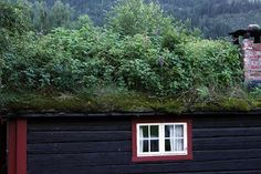 Green Roof Norway