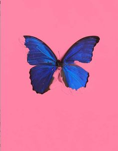 296e4abb5367 Bid now on Blue Butterfly (from In the Darkest Hour There May Be Light) by  Damien Hirst. View a wide Variety of artworks by Damien Hirst, now  available for ...