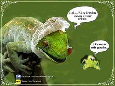 Afrikaans, Lol, Humor, Laughing So Hard, Humour, Afrikaans Language, Jokes, Funny Humor