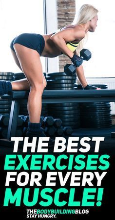 Bodybuilding Find out what are the best exercises for every muscle group to achieve the best symmetrical muscle building results! Fitness Tips For Women, Abs Workout For Women, Health And Fitness Tips, Group Fitness, Muscle Building Women, Muscle Building Workouts, Body Workouts, Increase Muscle Mass, Guy