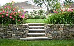 rock wall/flowering plants