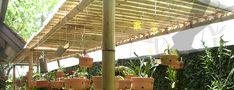 Confira as 5 dicas infalíveis para construir seu pergolado de bambu gastando muito pouco! Veja ainda 10 fotos inspiradoras que a Siote preparou para você!