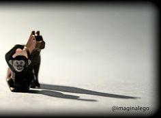 Friendship  good morning!  #monkey #dog #goodmorning #lego #afol #minifigures #instalego #legogram #toyslagram_lego #legominifigs #brickshift #brick_vision #legofigures #starwars #vitruvianbrix #toyart #toyartistry #brickpichub #imaginalego by imaginalego