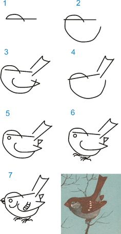 How to draw sparrow drawings mandala Art Drawings For Kids, Bird Drawings, Pencil Art Drawings, Drawing For Kids, Animal Drawings, Easy Drawings, Drawing Sketches, Drawing Lessons, Drawing Techniques