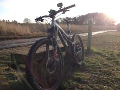 Intense Tracer 275 Alloy - Raw - on Chobham Common just before sunset #Intense
