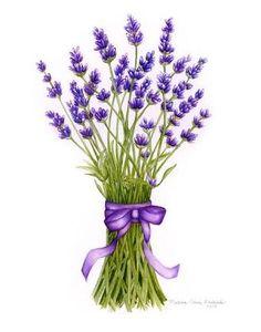 lavender art ile ilgili görsel sonucu