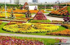 Empregando técnicas de agricultura biosustentável, inclusive reutilização da água, este local fabuloso possui 45 milhões de flores distribuídas em 6.800 m2