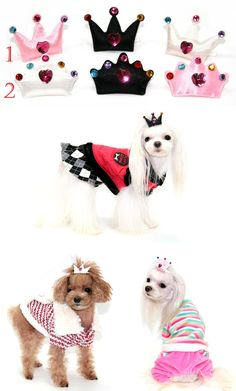 PUPPY ZZANG CROWN DOG HAIR CLIP - Tap the pin for the most adorable pawtastic fur baby apparel! You'll love the dog clothes and cat clothes! <3