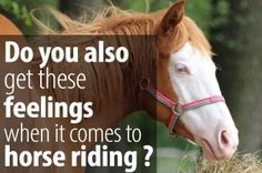 When I started horse riding I always thought...