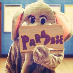 paradise elephant coldplay