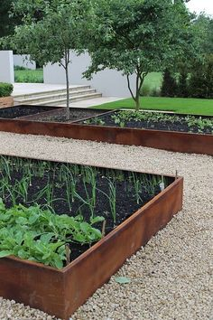 I need to do this around my raised garden beds when I build them.