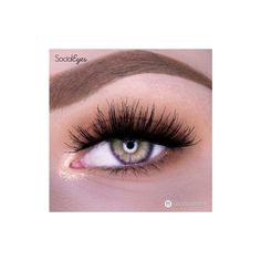 Social Eyes Flutter (20 AUD) ❤ liked on Polyvore featuring beauty products, makeup, eye makeup, eyes and beauty