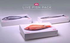 mila-fish-pack