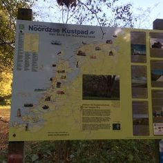The path through the Haagse Bos is part of a long coastal path, named Noordzee Kustpad, through wonderful dune areas.