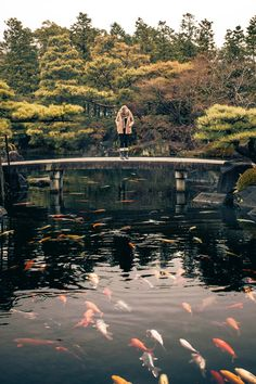 Himeji Castle Gardens   Japan ~ By Ilia Kotchenkov
