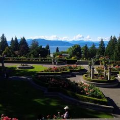 The beautiful UBC campus where the athletes are staying