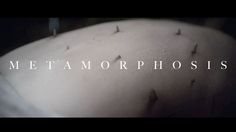 Metamorphosis by Tell No One. A short film retelling Titian's Metamorphosis for The National Gallery, London.