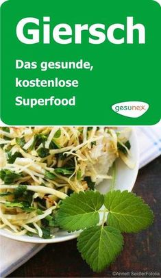 Giersch - das gesunde, kostenlose Superfood Giersch is the superfood vegetable, which mostly misjudg Aromatic Herbs, Medicinal Herbs, Superfood, Smoothie Menu, Carrot Greens, Edible Wild Plants, Good Food, Yummy Food, Healthy Smoothies