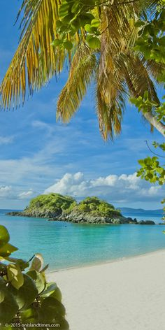 Trunk Cay, St John, USVI.   - Explore the World with Travel Nerd Nici, one Country at a Time. http://TravelNerdNici.com
