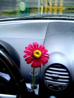 VW New Beetle RED Silk Daisy Flower with VW Clear Vase | eBay