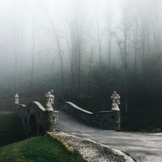 Wicked cool bridge leading to forest n fog and mist.